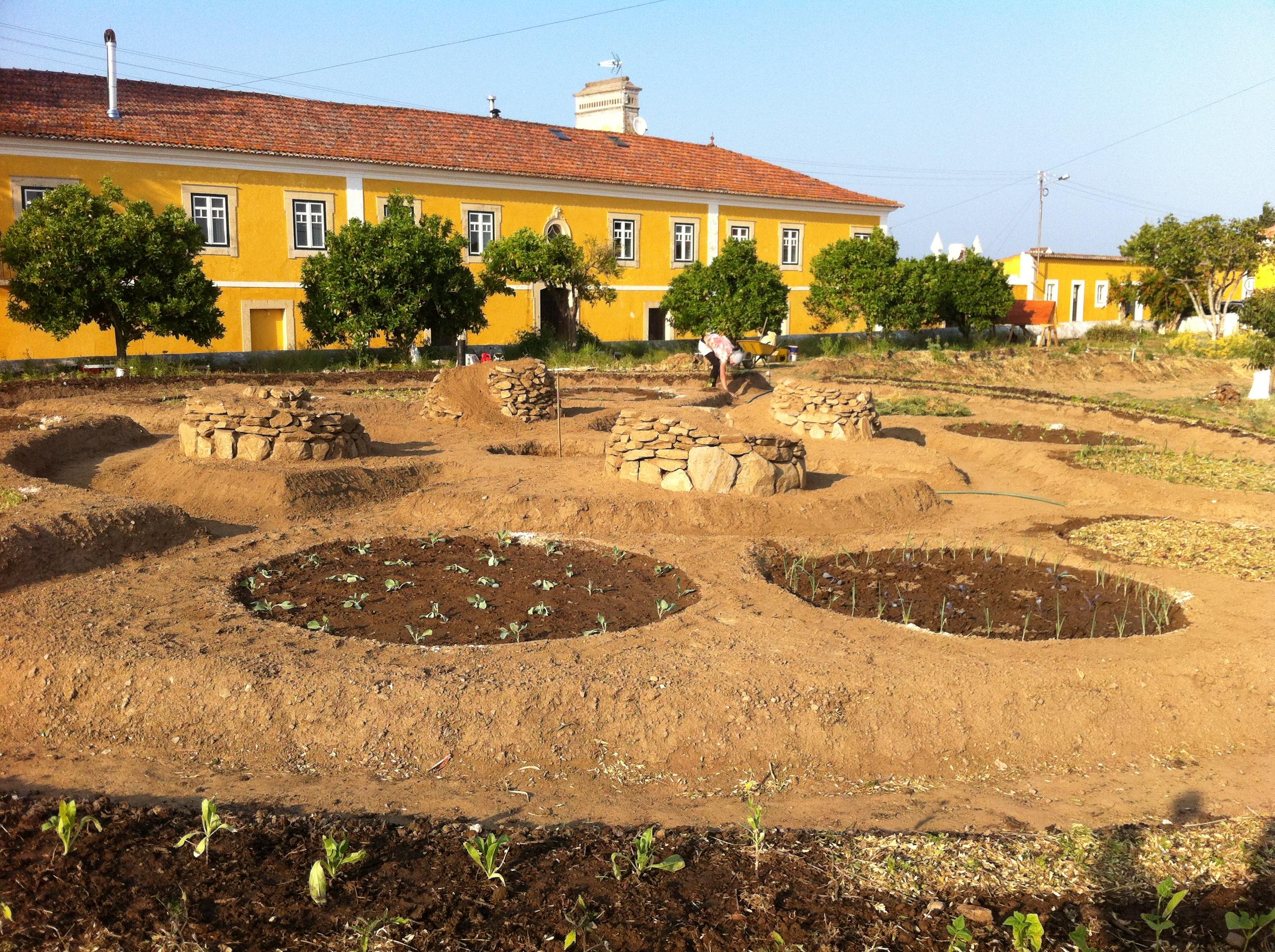 horta biológica quinta s.josé dos montes